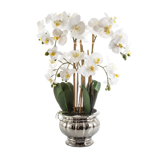 Florabelle 68cm Potted Faux Orchid Plant