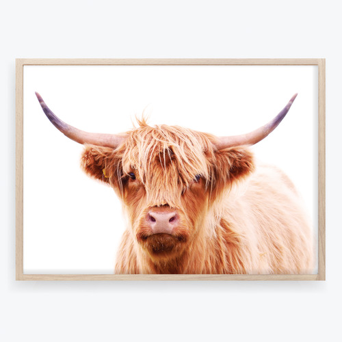 Design Mondo Hairy Highland Cow Printed Wall Art