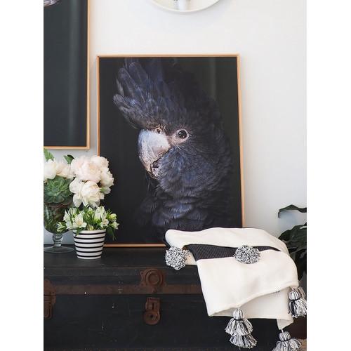 Amelia Anderson Black Betty I Print