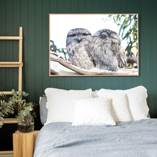 Amelia Anderson Tawny Frogmouths Printed Wall Art