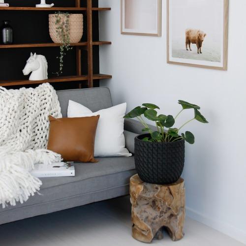 Luxury Plain Leather Cushion