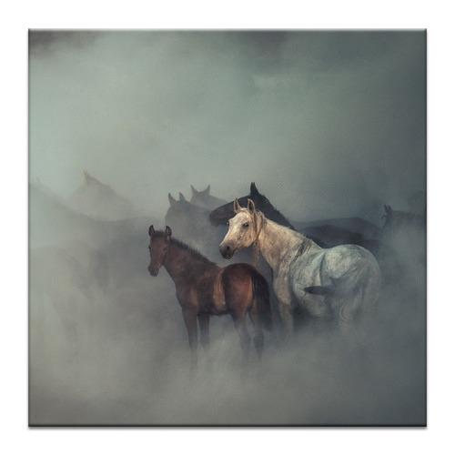 Photographers Lane The Lost Horses Photographic Art Print