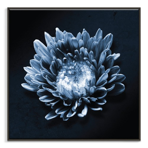 Blue Flower Printed Wall Art