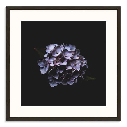 Photographers Lane Hello Blossom Printed Wall Art