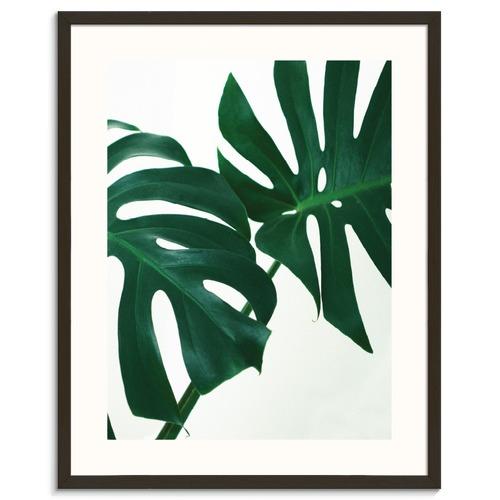Photographers Lane Tropical Leaf 2 Printed Wall Art