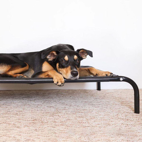 T&S Pet Products Black T&S Raised Dog Bed