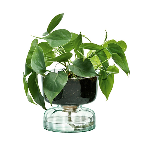 LSA Canopy Self-Watering Planter
