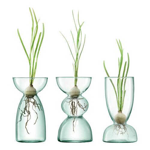 LSA 3 Piece Canopy Trio Glass Bulb Vase Planter Set