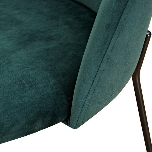 Temple & Webster Aria Velvet Dining Chairs