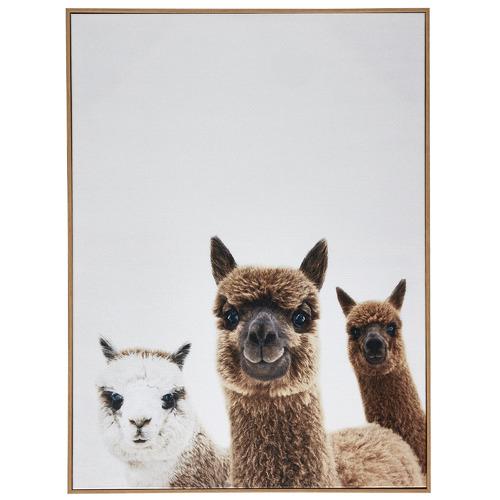Alpaca Friends Framed Canvas Wall Art