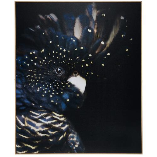Curious Cockatoo Framed Canvas Wall Art