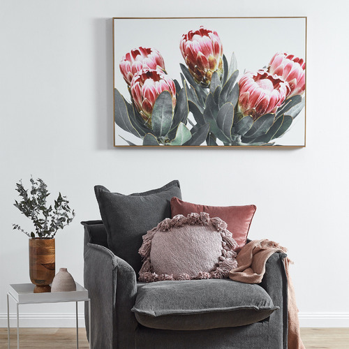 Temple & Webster Protea Bunch Framed Canvas Wall Art