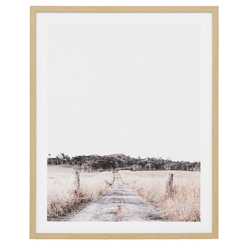 Temple & Webster Australian Path Framed Printed Wall Art