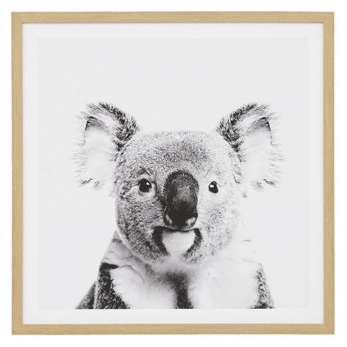 Temple & Webster Curious Koala Framed Printed Wall Art