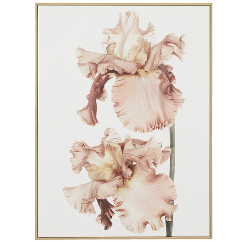 Soft Floral Blush Framed Canvas Wall Art