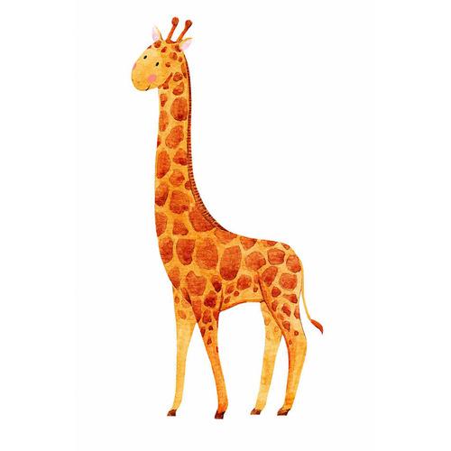 Sunday Homewares Zeraffa Giraffe Canvas Wall Art