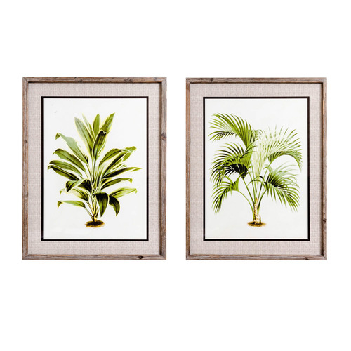 Sunday Homewares 2 Piece Palm Pair Framed Printed Wall Art Set