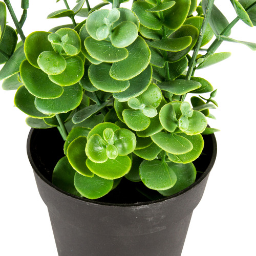 High ST. 27cm Potted Faux Eucalyptus Plant