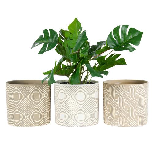 3 Piece Geometric Swirl Terracotta Pot Planter Set