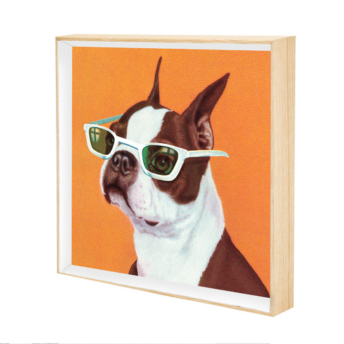Iconiko Smart Frenchie Framed Printed Wall Art
