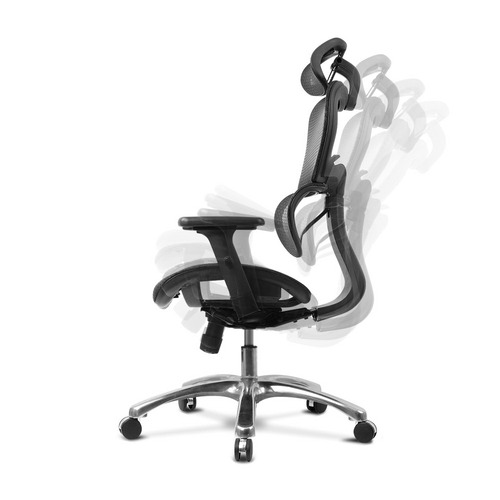 Dwell Home Deluxe Mesh Ergonomic Office Chair