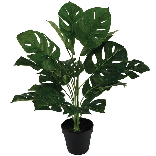 Cooper & Co Homewares 60cm Faux Monstera Plant