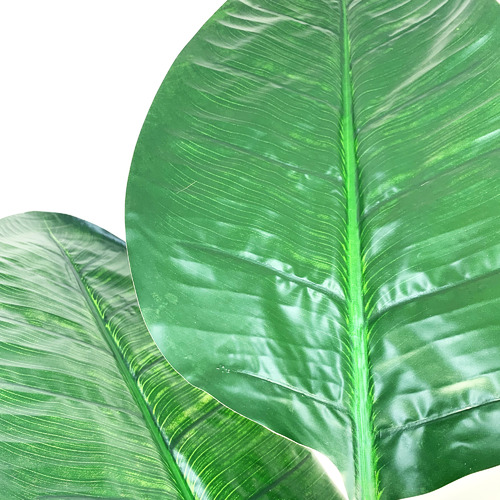 Cooper & Co Homewares 180cm Potted Faux Banana Leaf Tree