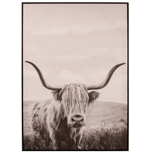Cooper & Co Homewares Yak Framed Canvas Wall Art