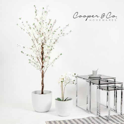 Cooper & Co Homewares 2 Piece Massima Planter Pot Set