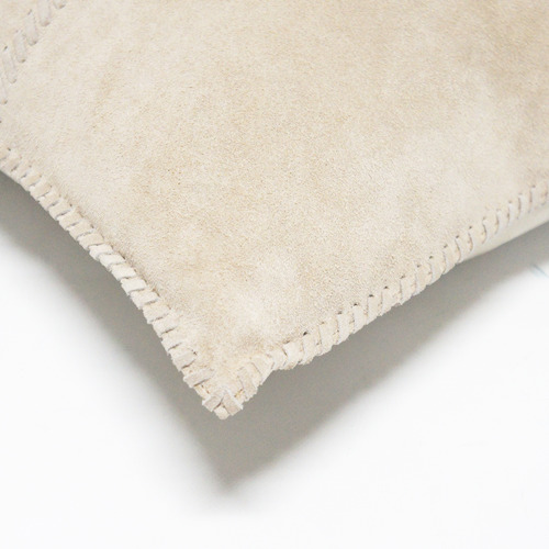 Banyan Home Beige Suede Leather Cushions