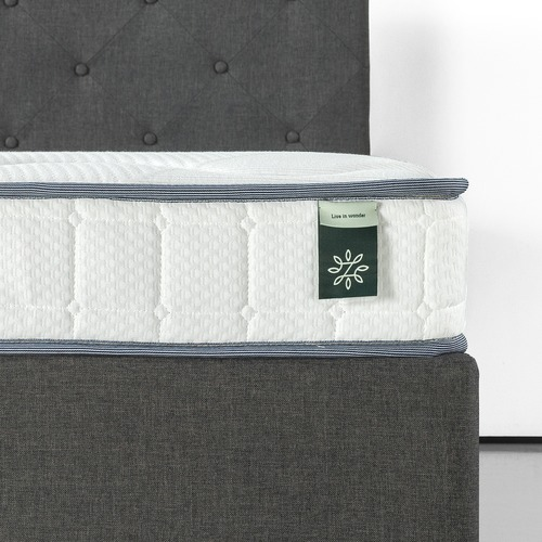 Studio Home 15cm Tight Top Bonnell Spring Mattress