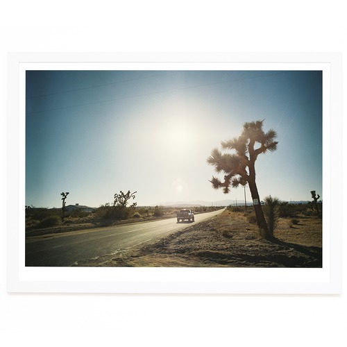Elle Green Photo Goodbye Joshua Tree Printed Wall Art