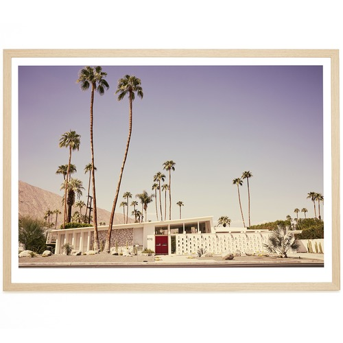 Elle Green Photo Palm Springs The Mesa Printed Wall Art