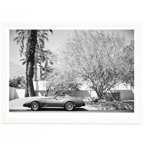 Elle Green Photo Palm Springs Corvette Printed Wall Art