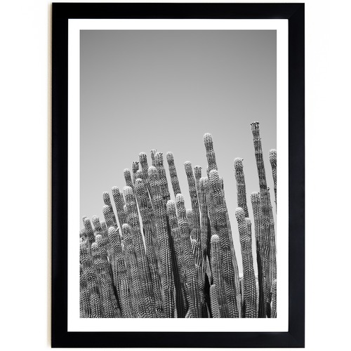 Elle Green Photo Palm Springs Cactus Printed Wall Art