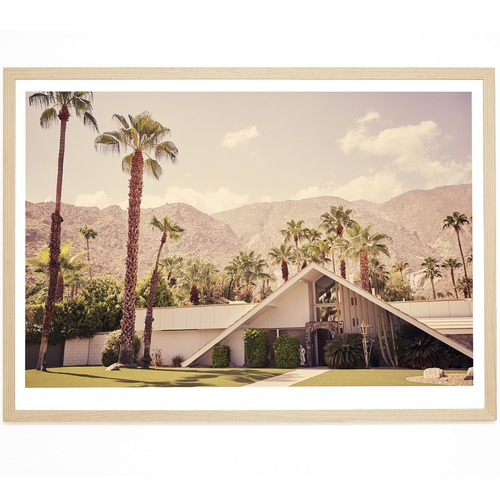 Elle Green Photo Palm Springs Chino Canyon Printed Wall Art