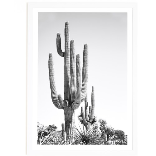 Elle Green Photo Cali Cactus Printed Wall Art