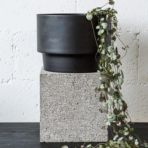 Behr & Co Century Iron Plant Pot