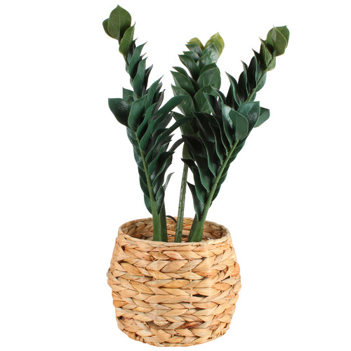 Maine & Crawford 3 Piece Charmer Seagrass Basket Set
