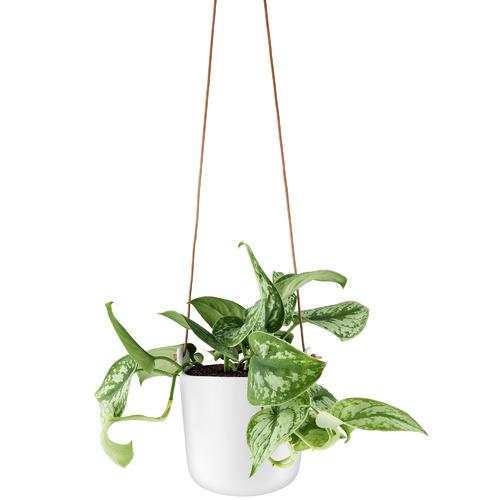 Eva Solo Eva Solo Hanging Self-Watering Planter