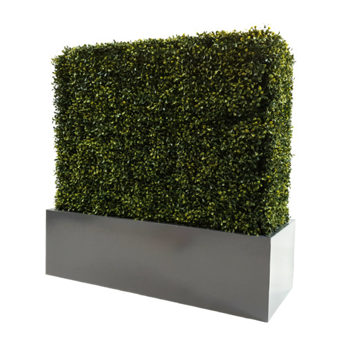 Designer Plants Rectangular Metal Planter