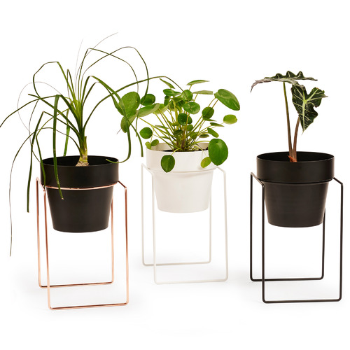 Shrub Metal Plant Stand with Pot