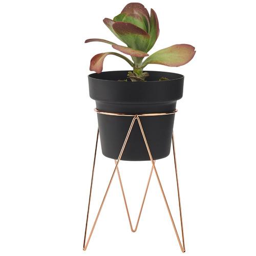 Maceta Metal Plant Stand with Pot