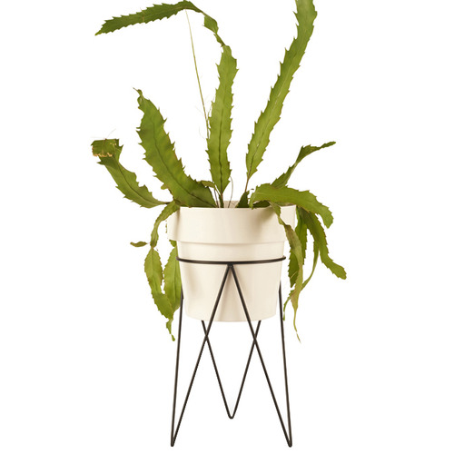 Bendo Maceta Metal Plant Stand with Pot