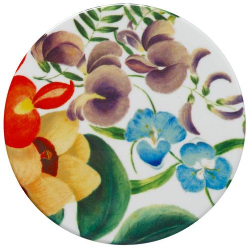 Iris Royal Botanic Garden by Euphemia Henderson Coasters