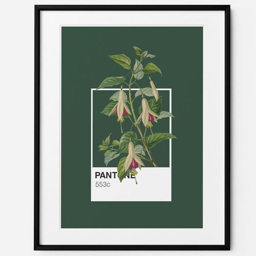 Art for Good Fuchsia Framed Print Wall Art