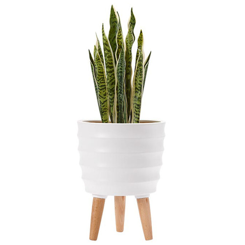 Modern Ripple Legged Planter Pot