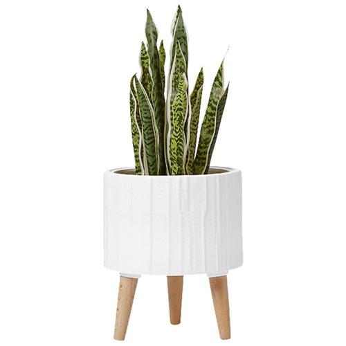 Modern 31cm Render Planter Pot