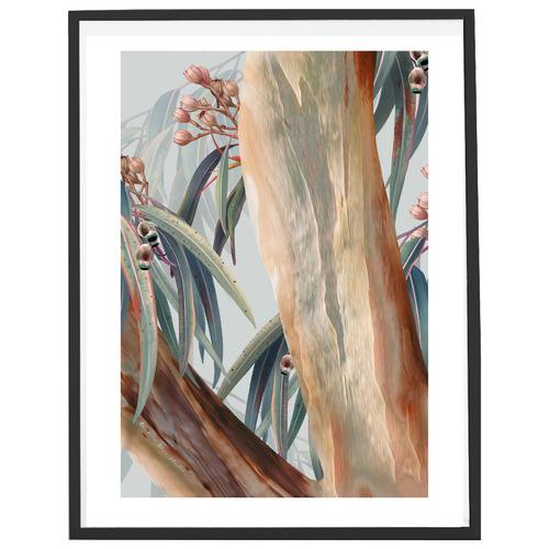Banksia Blue Studio Boroondara III Australian Blue Gum Printed Wall Art