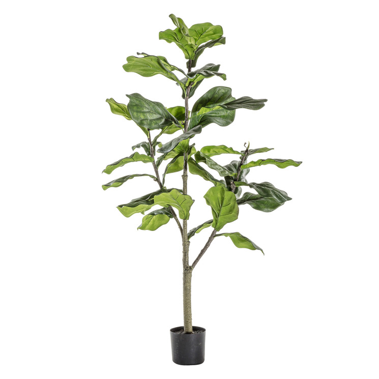 180cm Potted Faux Fiddle Tree